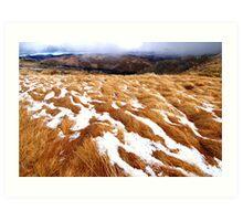 Snowgrass Art Print
