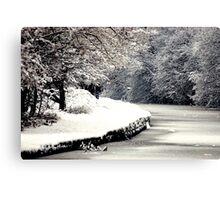 A Snowy Walk Canvas Print