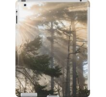 Morning Fog in the Cypress and Redwoods, Humboldt County, California iPad Case/Skin