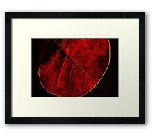 Sea Grape Framed Print