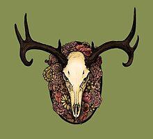 Stag Skull by Zuzanna Krolik