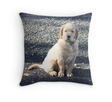 You Said To Wait Didn't you? Jimmy '10 Throw Pillow