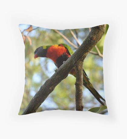 Rainbow Lorikeet sitting on a Branch Throw Pillow
