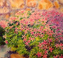 Creeping Phlox by Bill Meeker