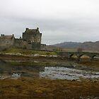 loche castle in scotland by leannepapas