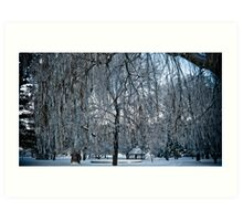 Under The Frosted Willow Art Print
