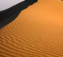 The arid Thar Desert by leannepapas