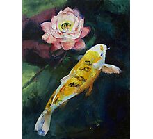 Koi and Lotus Flower Photographic Print