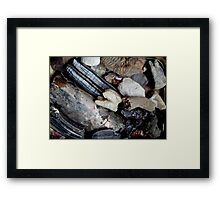 Needful Things - Fossils Framed Print