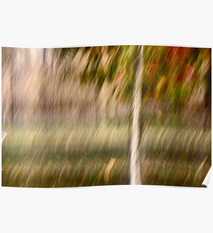 Small Tree in Autum Poster