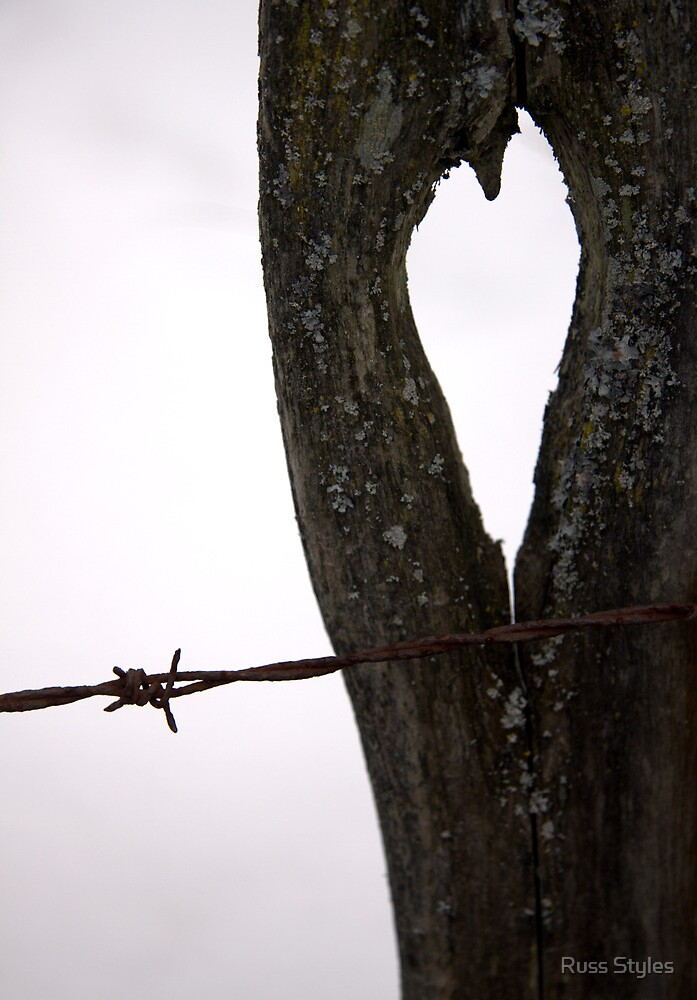 barbed wire kisses... by Russ Styles
