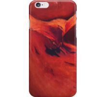 Phoenix in Flight iPhone Case/Skin