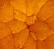Orange Stained Glass by Robin Nellist