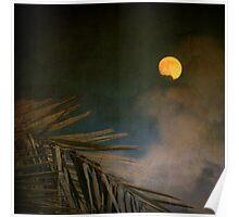 Florida Moon Poster