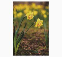 Daffodils Baby Tee