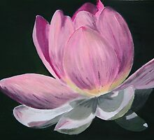 Lotus love by Lynda Harris