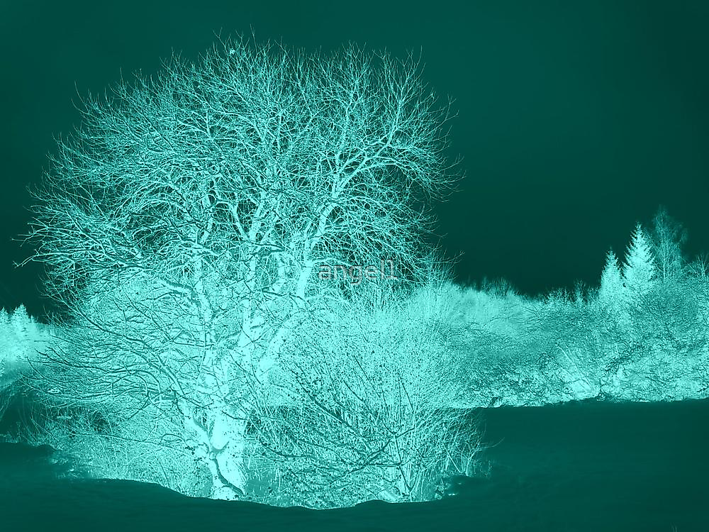 Trees in Aqua by ©The Creative  Minds