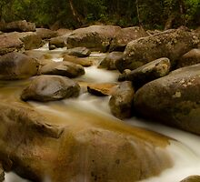 Josephine Creek by Ryan Pedlow