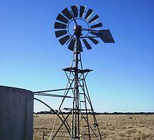 34 Mill by Lynette Paltridge