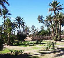 Piece of Paradise- Palmaraie of Marrakech by Katlyn Novitski