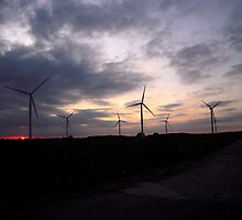 Wind Farm at Lisset. by Patricia Rogers