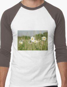 Daisies in field  Men's Baseball ¾ T-Shirt