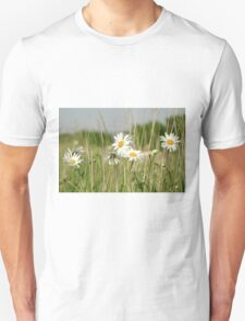 Daisies in field  T-Shirt