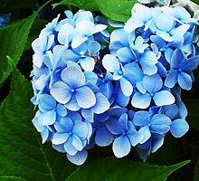 Majestic blue infusion by Katlyn Novitski