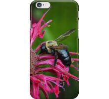 Last of the Nectar iPhone Case/Skin