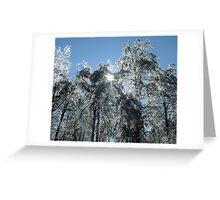 Ice Trees Greeting Card