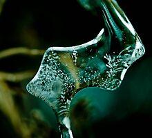 Macro Ice by Rory Garforth