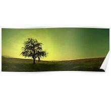 Green Sunset Poster