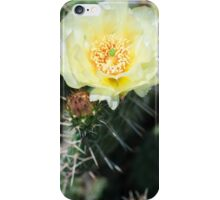 Alberta Cactus iPhone Case/Skin