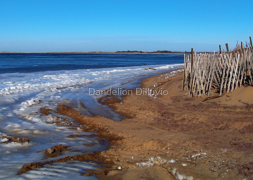Frozen Napeague Bay by Dandelion Dilluvio