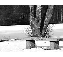 BW bench Photographic Print