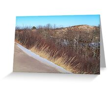 Montauk Walking Dunes - Spilling Into the Forest  Greeting Card