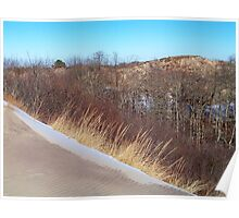 Montauk Walking Dunes - Spilling Into the Forest  Poster