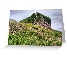 Wildflowers Surround the Historic Stonework Lime Kiln Greeting Card