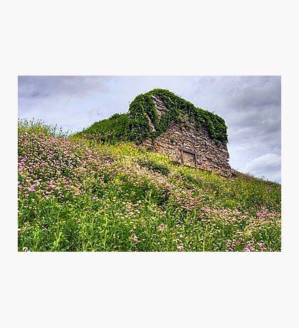 Wildflowers Surround the Historic Stonework Lime Kiln Photographic Print