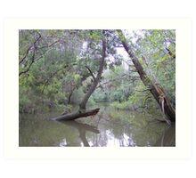 A Floridian Flood Art Print