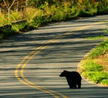 #624  New Jersey Black Bear Sticker