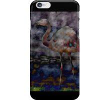 Acid + Flamingo iPhone Case/Skin
