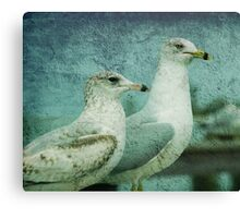 The Two Guys Canvas Print