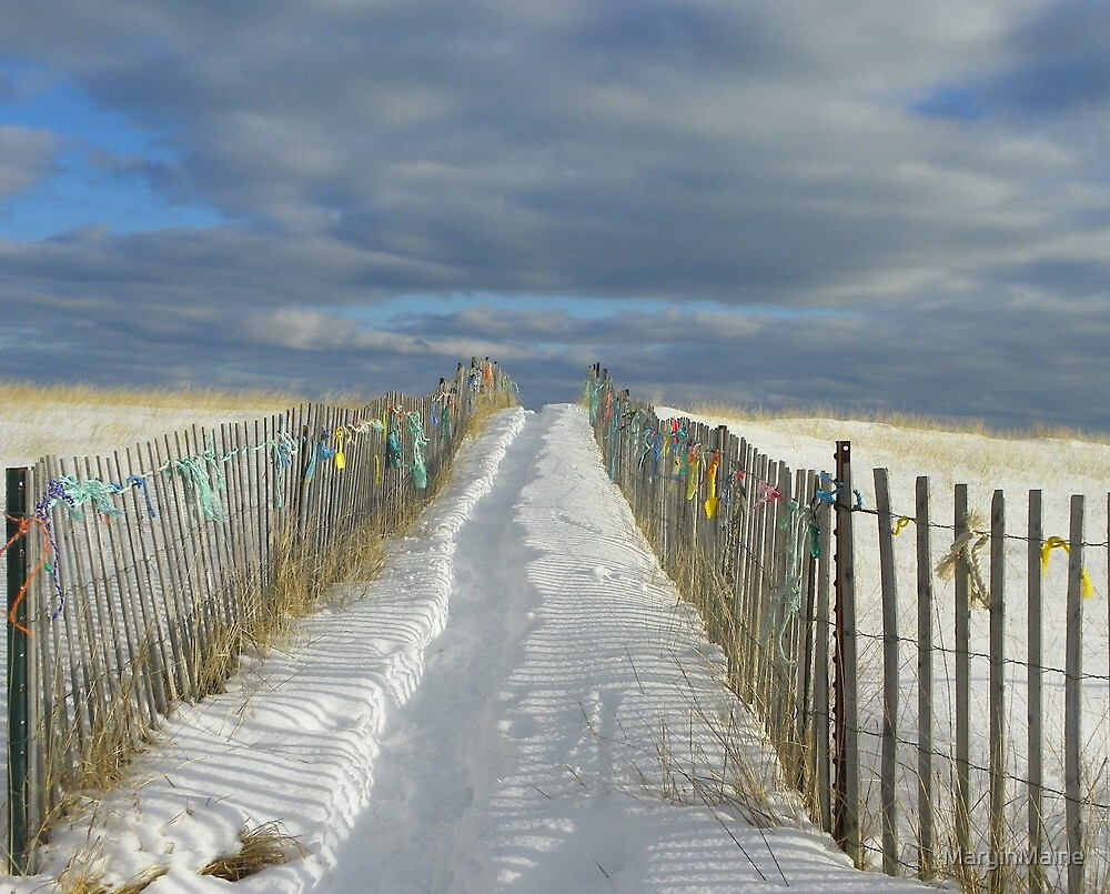 Another Walkway to the Beach by MaryinMaine