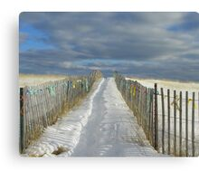 Another Walkway to the Beach Canvas Print