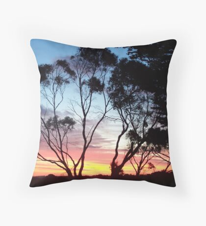 Gorgeous Sunset Throw Pillow