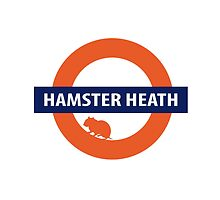Hamster Heath by bexieboo