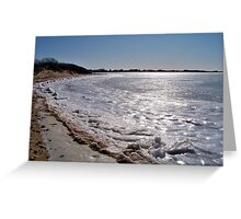 Glistening Ice of Napeague Bay  Greeting Card