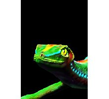 Gecko Lizard Close up 3d digital Art Photographic Print