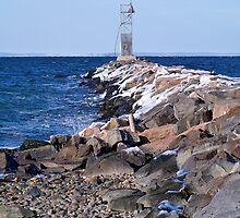 Montauk Harbor by Dandelion Dilluvio